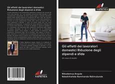 Gli effetti dei lavoratori domestici Riduzione degli stipendi e sfide kitap kapağı