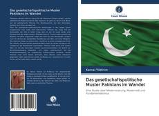 Das gesellschaftspolitische Muster Pakistans im Wandel kitap kapağı