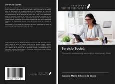 Servicio Social:的封面