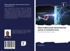 Bookcover of Идентификация критических узлов в сложной сети