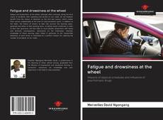 Bookcover of Fatigue and drowsiness at the wheel