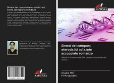 Bookcover of Sintesi dei composti eterociclici ad azoto accoppiato romanzo