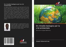 Обложка Un rimedio teologico per la crisi ambientale