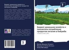 Bookcover of Бюджет домашних хозяйств и показатели потребления продуктов питания в Кибумбе
