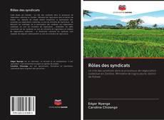 Rôles des syndicats kitap kapağı