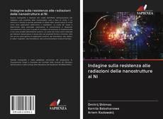 Copertina di Indagine sulla resistenza alle radiazioni delle nanostrutture al Ni
