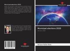 Bookcover of Municipal elections 2020