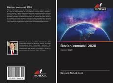 Bookcover of Elezioni comunali 2020