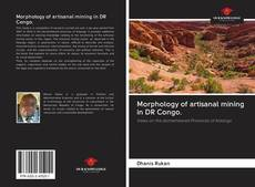 Bookcover of Morphology of artisanal mining in DR Congo.