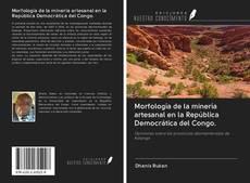 Portada del libro de Morfología de la minería artesanal en la República Democrática del Congo.
