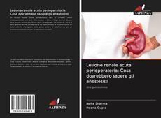 Copertina di Lesione renale acuta perioperatoria: Cosa dovrebbero sapere gli anestesisti