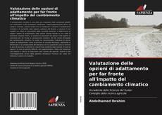 Buchcover von Valutazione delle opzioni di adattamento per far fronte all'impatto del cambiamento climatico