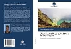 Bookcover of CO2 EFLK und CO2 ECUS FPG & FP vorschlagen