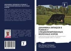 Buchcover von ДИНАМИКА ЛИПИДОВ В РОМАНЕ У СПЕЦИАЛИЗИРОВАННЫХ МОЛОЧНЫХ КОРОВ