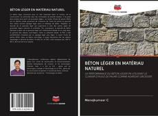 Couverture de BÉTON LÉGER EN MATÉRIAU NATUREL