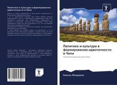 Bookcover of Политика и культура в формировании идентичности в Чили