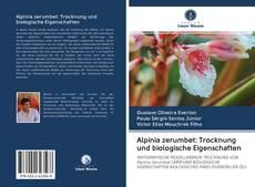 Bookcover of Alpinia zerumbet: Trocknung und biologische Eigenschaften