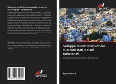 Borítókép a  Sviluppo multidimensionale in alcuni stati indiani selezionati - hoz