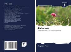 Borítókép a  Fabaceae - hoz