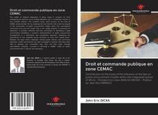 Droit et commande publique en zone CEMAC的封面