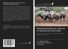Capa do livro de Metaloproteinasas de matriz en la reproducción del búfalo