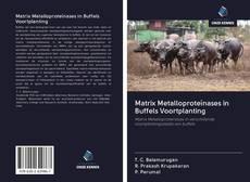 Bookcover of Matrix Metalloproteïnases in Buffels Voortplanting