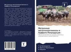 Bookcover of Матричные металлопротеиназы в буффало Репродукция