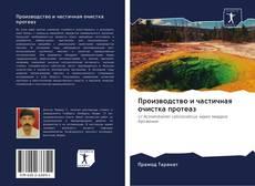 Bookcover of Производство и частичная очистка протеаз