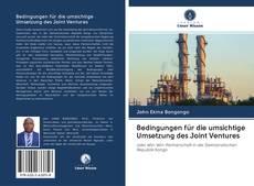 Bookcover of Bedingungen für die umsichtige Umsetzung des Joint Ventures