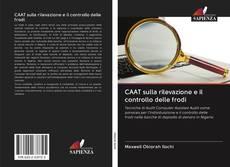 Copertina di CAAT sulla rilevazione e il controllo delle frodi