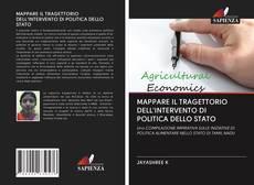 Bookcover of MAPPARE IL TRAGETTORIO DELL'INTERVENTO DI POLITICA DELLO STATO