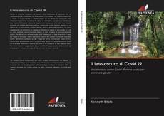 Bookcover of Il lato oscuro di Covid 19