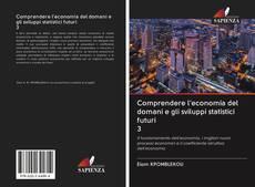 Bookcover of Comprendere l'economia del domani e gli sviluppi statistici futuri 3
