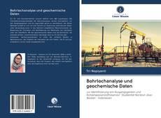 Capa do livro de Bohrlochanalyse und geochemische Daten