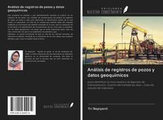 Análisis de registros de pozos y datos geoquímicos的封面