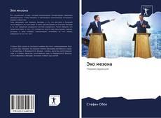 Bookcover of Эхо мезона