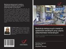Buchcover von Redukcja toksycznych metali w systemach wodnych przy użyciu adsorbentów mineralnych