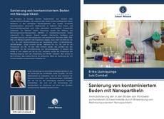 Capa do livro de Sanierung von kontaminiertem Boden mit Nanopartikeln