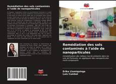 Couverture de Remédiation des sols contaminés à l'aide de nanoparticules