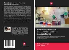 Remediação de solo contaminado usando nanopartículas kitap kapağı