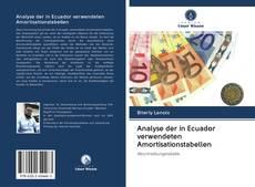Analyse der in Ecuador verwendeten Amortisationstabellen kitap kapağı