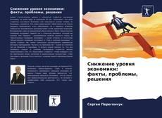 Bookcover of Снижение уровня экономики: факты, проблемы, решения