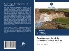 Обложка Auswirkungen der Gully-Erosion auf Infrastrukturen