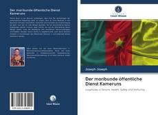 Der moribunde öffentliche Dienst Kameruns kitap kapağı