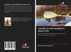 Bookcover of LAVORO DI RAFFINAMENTO NELLA VITA