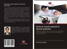 Capa do livro de Droit du travail collectif et liberté syndicale