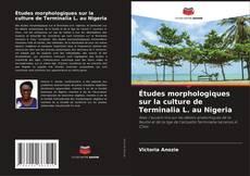 Bookcover of Études morphologiques sur la culture de Terminalia L. au Nigeria