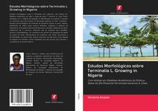 Bookcover of Estudos Morfológicos sobre Terminalia L. Growing in Nigeria
