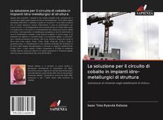 Bookcover of La soluzione per il circuito di cobalto in impianti idro-metallurgici di struttura
