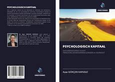 Обложка PSYCHOLOGISCH KAPITAAL